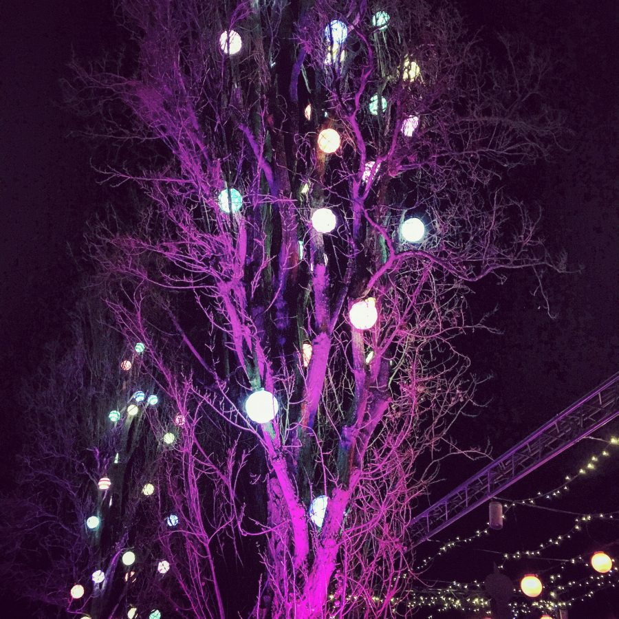 Festival of Lights, River Moselle, Metz, France