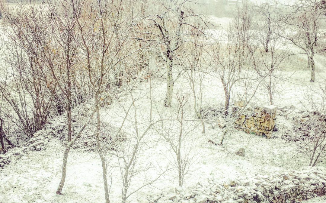Snow Arrives in Zrenj, Istria